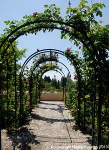 Alhambra garden arches, Granda, Spain.