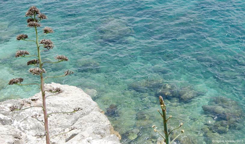 Water, Dubrovnik, Croatia.
