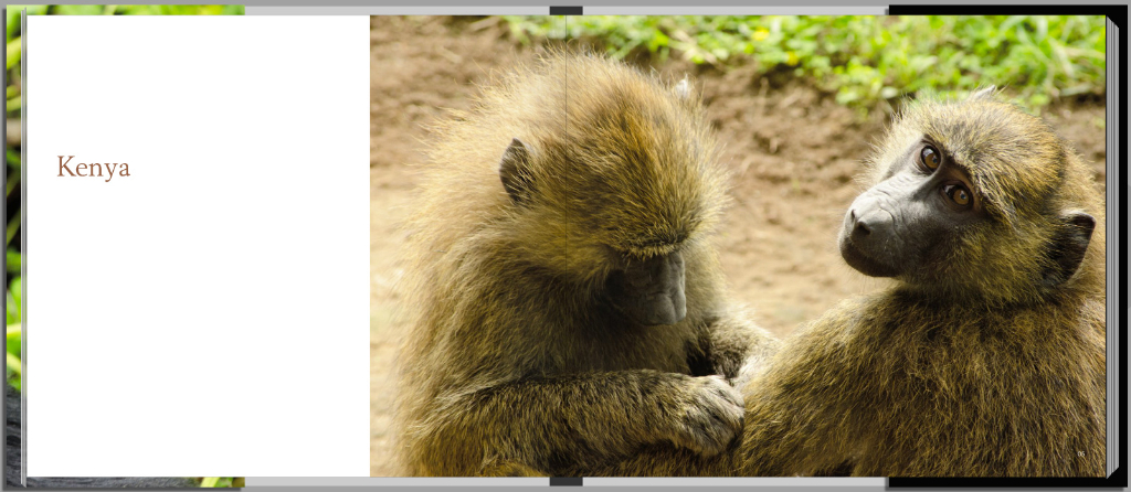 Footprints through East Africa - Kenya intro page, with baboons