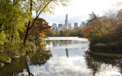 Central Park, New York, USA