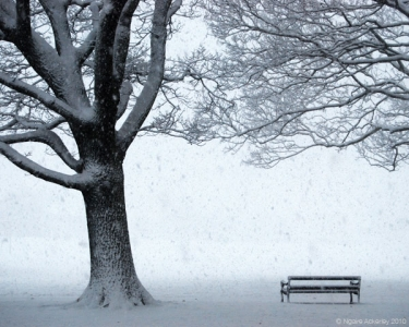 Lone park bench in the snow, London, England.