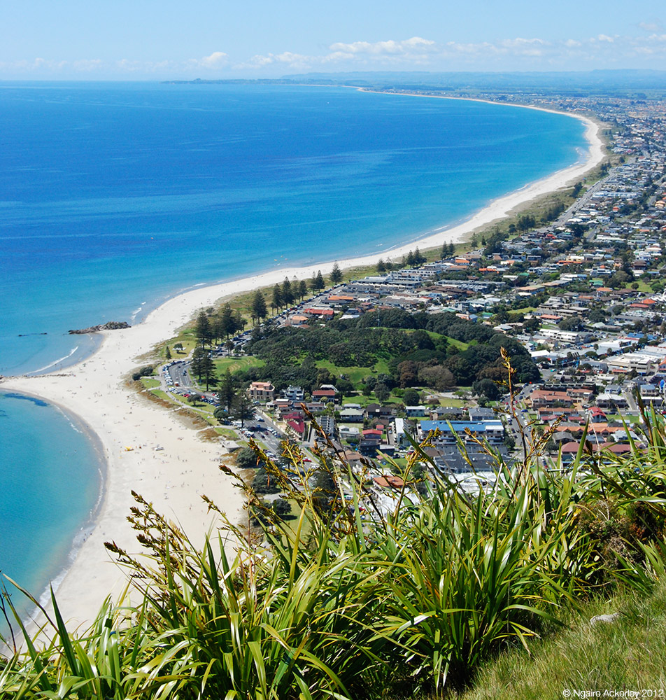 View from Mt. Maunganui, New Zealand.