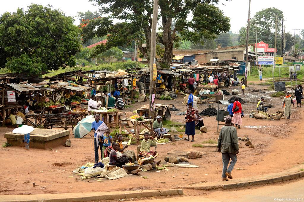 Roadside food on road near Kampala, Uganda.