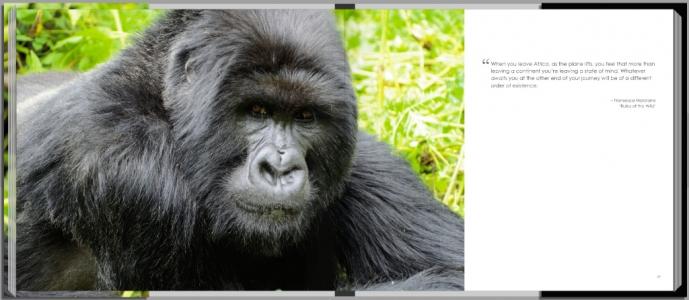 Footprints through East Africa - Rwanda gorilla