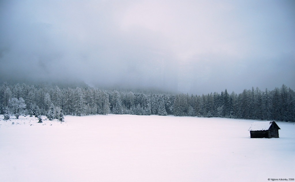 Snow, Bavaria.