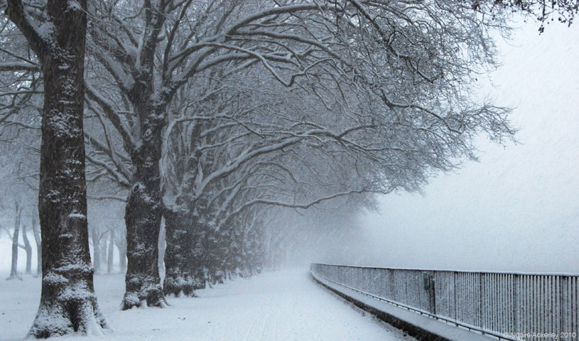 Snowy path, London, England.