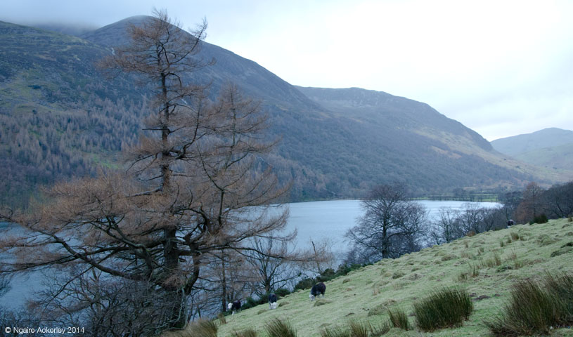 Thirlmere, Lake District, Cumbria, England.